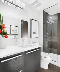 bathroom cabinet remodel. Wall Mirror Cabinet Bathroom Remodel Ideas On A Budget Fascinating Brown Wooden Frame Glass Windows Contemporary Mounted Up Lighting White Ceramic Tile