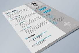 Indesign Resume Template Delectable Free Eye Catching Indesign Resume Templates 60 Free Cv Resume