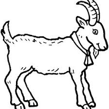Small Picture Farm Animal Coloring Page Affordable Wwwcoloring Farm Animal