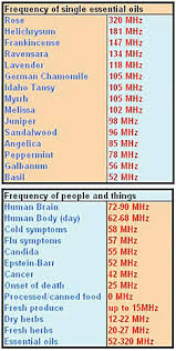 Young Living Essential Oils Frequency Chart Frequencies Notes And Making Your Own Perfumes Essential