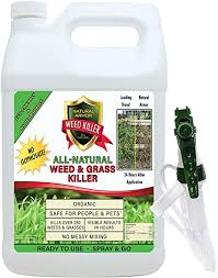 Eco garden pro is keeping the safety of you and your family. Amazon Com Natural Armor Weed And Grass Killer All Natural Concentrated Formula Contains No Glyphosate 128 Oz Gallon Garden Outdoor