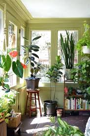 home decor plants living room home decor stores medford or