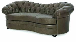 leather couches and dogs best couch for dog owners s es