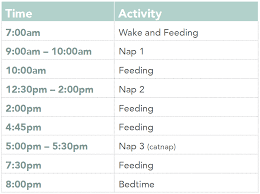 8 Month Old Feeding Chart Nap Schedules 5 Months To 25 Months Taking Cara Babies
