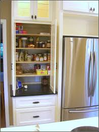 Pantry For A Small Kitchen Small Kitchen Pantry Cabinet Ideas Pantry Home Design Ideas