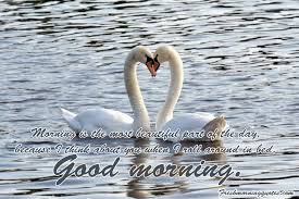 Lovingyou Quote Good Morning Best of 24 Beautiful Good Morning Quotes For Her