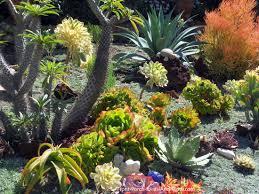 Succulent Garden Designs Fascinating Succulent Garden Designs Pictures Of Succulents Front Porch Ideas