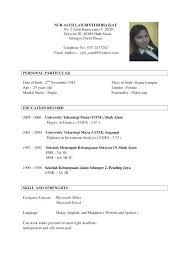 Sample Resume For Job Application Format Applying Download Of