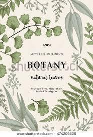 Botany Design Magdalene Project Org