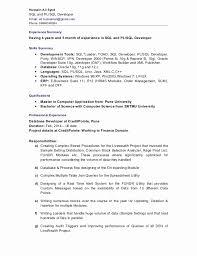Sql Programmer Sample Resume Magnificent Sample Resume For Experienced Pl Sql Developer New Resume Resume Ideas