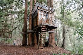 Image Kids Catherine New Built Tree House For About 25000 On Family Property In The Santa Cruz Wall Street Journal Tree Houses For Grownups Wsj