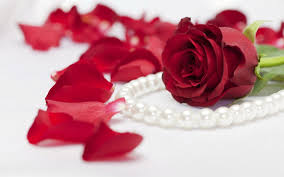 Red Flower Wallpaper Beautiful Rose Flowers Wallpapers Group With 70 Items
