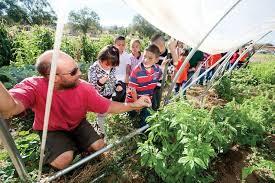ag extension offers master gardener classes