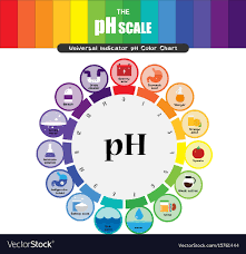 color chart ph scale universal indicator ph color chart