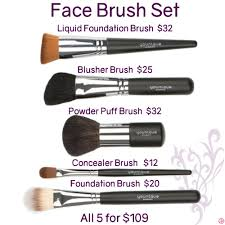 face brush set by younique to order want more information or tips join my facebook group at facebook groups 106517206410341