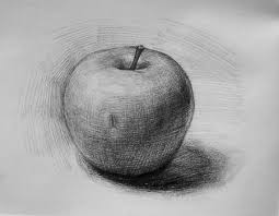 apple fruit drawing realistic. how to draw \u0026 shade realistic looking apple step wise beginners video | rock fruit drawing r