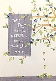 Sympathy Card Pet Loss Pet Sympathy Condolence Card Loss Of Your Dog Amazon Co Uk Toys