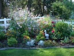 Small Picture Perennial Garden Design Tips For Growing Perennial Flower Gardens