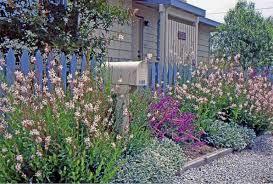 a coastal cottage garden van de
