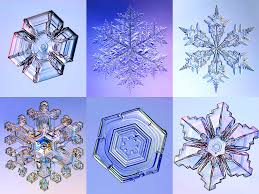 Snowflake Bullet Point Mysteries Of The Snowflake The Curious World Of The Ice Crystal