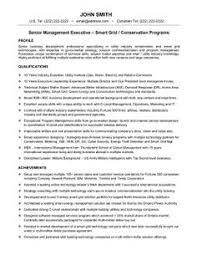 Senior Resume Template 48 Best Best Executive Resume Templates Samples Images Executive