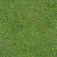 wild grass texture. Wild Grass Is A Royalty Free Texture In The Category: Seamless Pot  Tileable Pattern Wild
