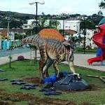 imagem de Santa Inês Bahia n-13