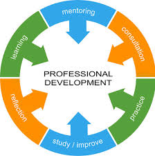 Professional Other Words 15 Professional Development Skills For Modern Teachers