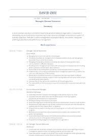 Human Resources Resumes Human Resources Resume Samples And Templates Visualcv