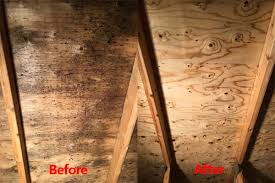 attic mold remediation cost.  Remediation Before And After Attic Mold To Attic Mold Remediation Cost