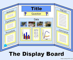 examples of poster board projects example display board for science fair or science project science