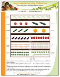 Small Picture Planting Times for Garden Vegetables
