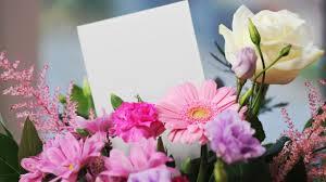 Top Citations Sur La Nature Et Les Fleurs Camping Petitnicecom