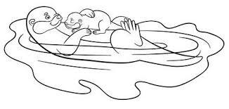 Otter Vectoren Illustraties En Clipart 123rf