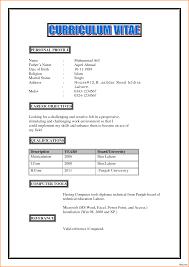 Resume Professional Profile Examples It 9d3dcfec2a8b47e76b0a9ccee21