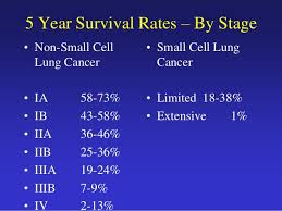 Stage 4 Lung Cancer Survival Rate Small Cell Lung Cancer