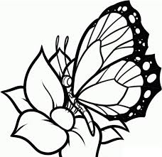 Pretty Flower Coloring Pages For Kids With Butterfly And Flower