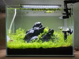 Azoo Aquarium Light Flexi Mini Attempt Uk Aquatic Plant Society