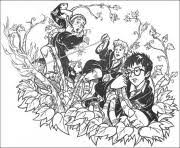 In case you don\'t find what you are looking for, use the top search bar to search again! Harry Potter Coloring Pages To Print Harry Potter Printable