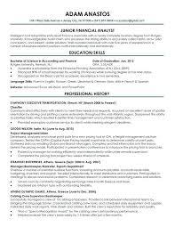 Sample Resume Portfolio Topshoppingnetwork Com