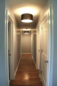 Narrow hallway lighting ideas Light Fixtures Lighting Bugs Larvae Small Hallway Ideas For Long Narrow Home Decorating Design Ceiling Lights Director Medicinafetalinfo Lighting Bugs Bite Small Hallway Ideas Mesmerizing Entryway