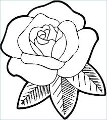 erfly and big flower coloring page for big flower coloring pages big coloring pages decorating big flower colouring pages big flower coloring sheets