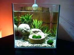 office fish tanks. Desk Fish Tank Office Ornaments Ideas Aquarium For Top Best Decoration On . Tanks