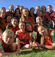 https://www.echolive.ie/cms_media/module_img/4120/2060213_1_articleinline_Fr_20O_20Neills_20Youghal_20players_20celebrate_20their_20Under_2014_20A_20championship_20win_20over_20Enniskeane.jpeg