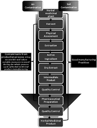 Flow Chart Showing The Hierarchy From Herbal Medicines To