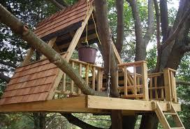 darts designcom Fresh Simple Treehouse Plans How To Build A