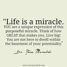 Miracle Quotes Interesting Quote By Steve Maraboli €�Life Is A Miracle YOU Are A Unique