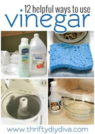 how and what to clean with vinegar