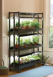 garden rack. 3 Shelf T5 Fluorescent Grow Light Stand Shown With Houseplants And Seedlings In Someone\u0027s Home Garden Rack