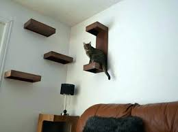 cat stairs on wall wall mounted cat perch wall mounted cat stairs cat wall shelves cat cat stairs on wall